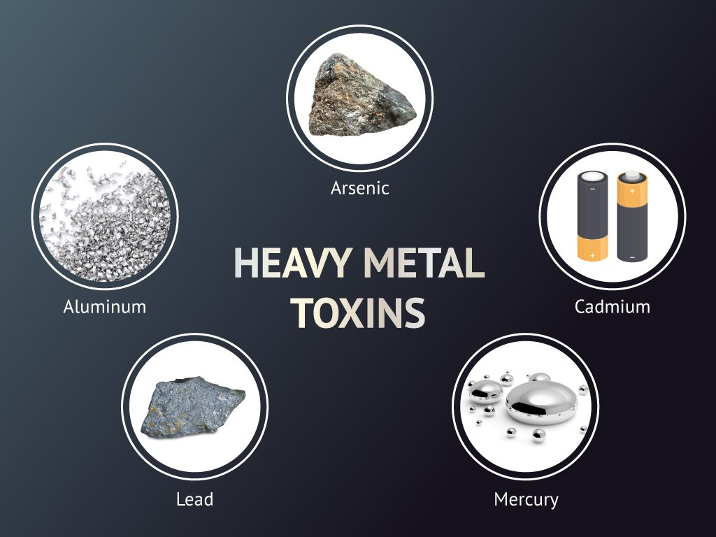 Examples of heavy metal toxins